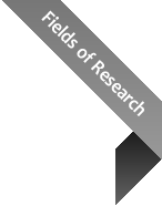 Fields of Research